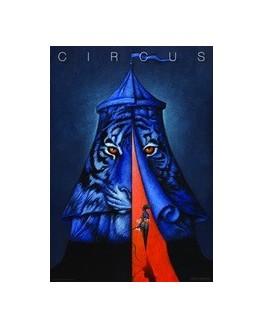 Circus (Tiger)