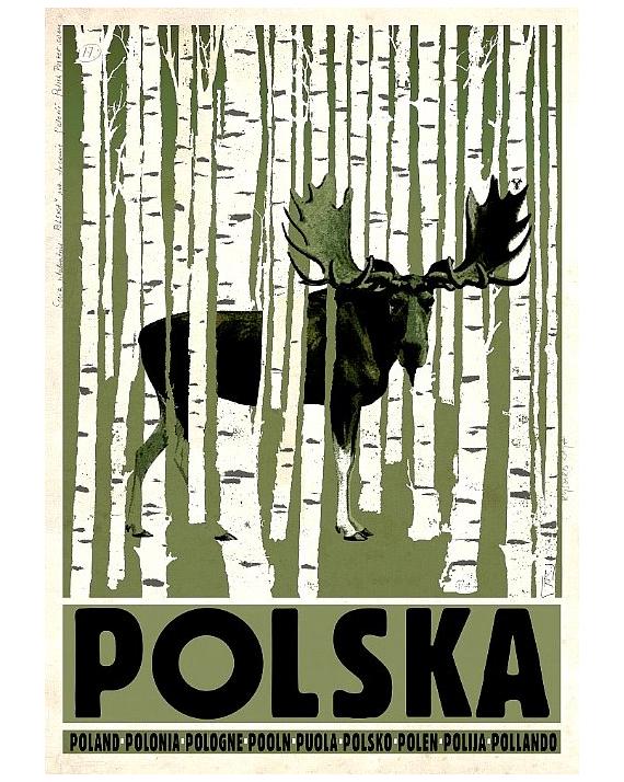 Poland (moose)