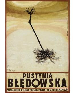 Polska - Pustynia Błędowska